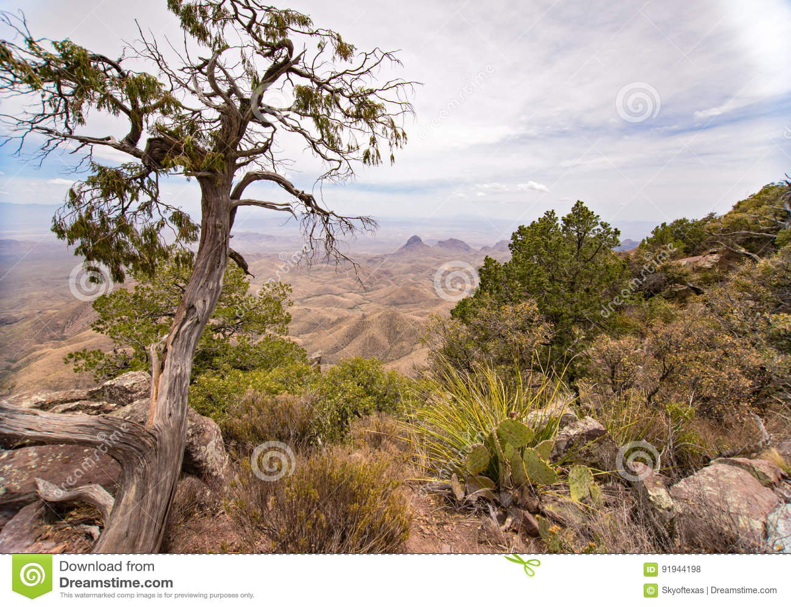 Взгляд от южного следа оправы в большом национальном парке загиба