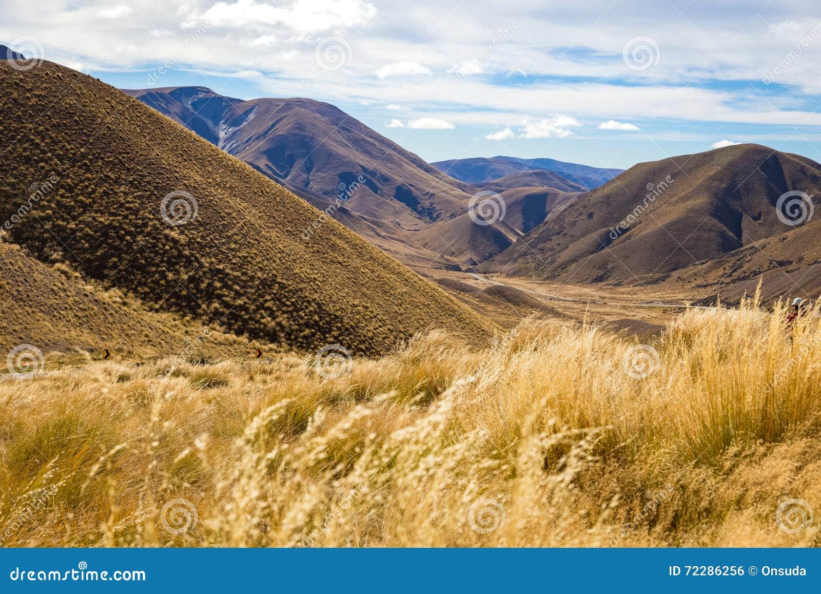 Download Взгляд пропуска Lindis, Новая Зеландия Стоковое Фото - изображение насчитывающей ряд, ландшафт: 72286256