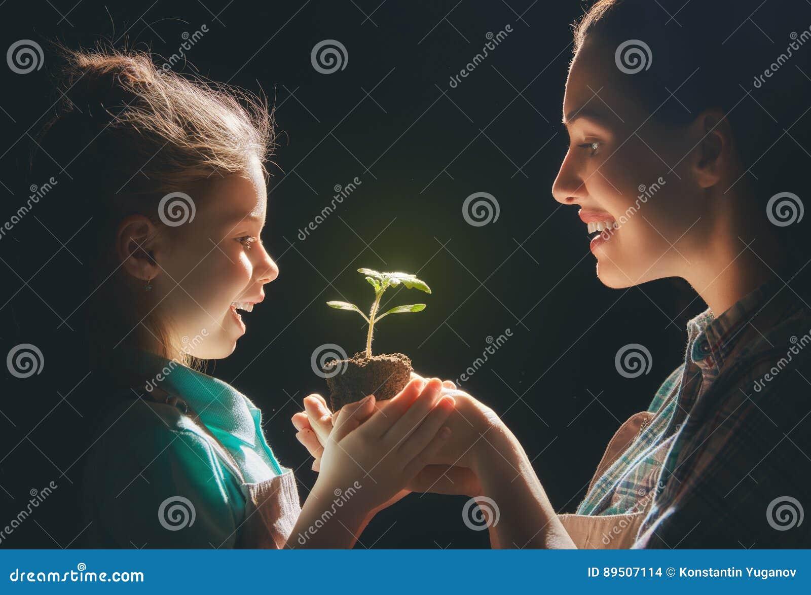 Взрослый и ребенок держа зеленый росток