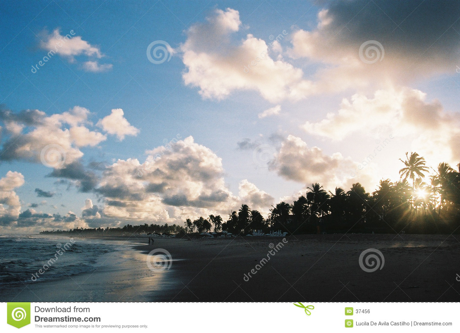 видимое захода солнца зерна пленки тропическое