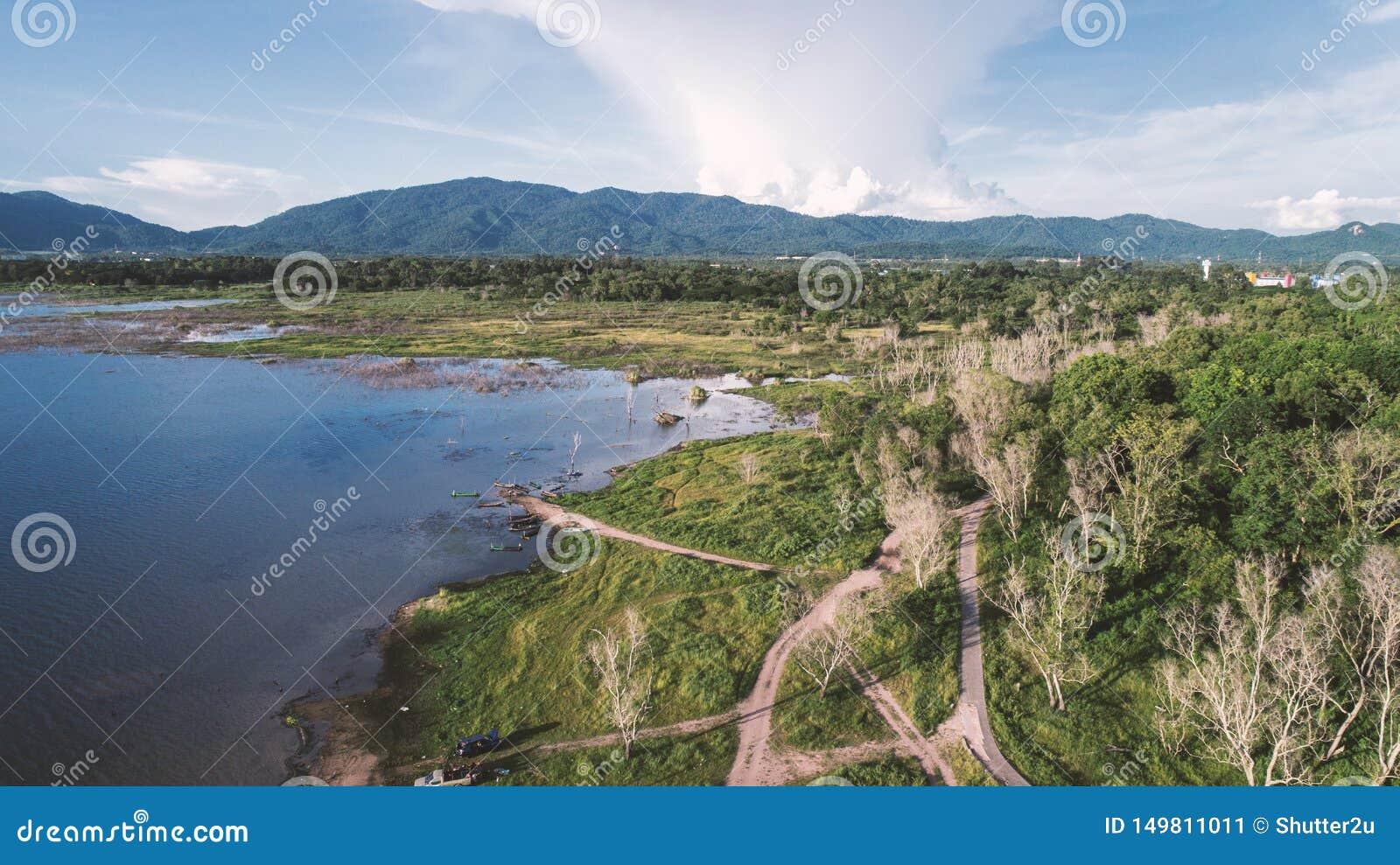 Вид с воздуха озера вдоль леса трутнем Тема ландшафта и природы