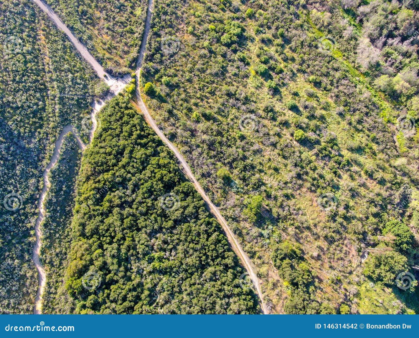 Вид с воздуха пешего туризма песочных следов в сухой зеленой горе