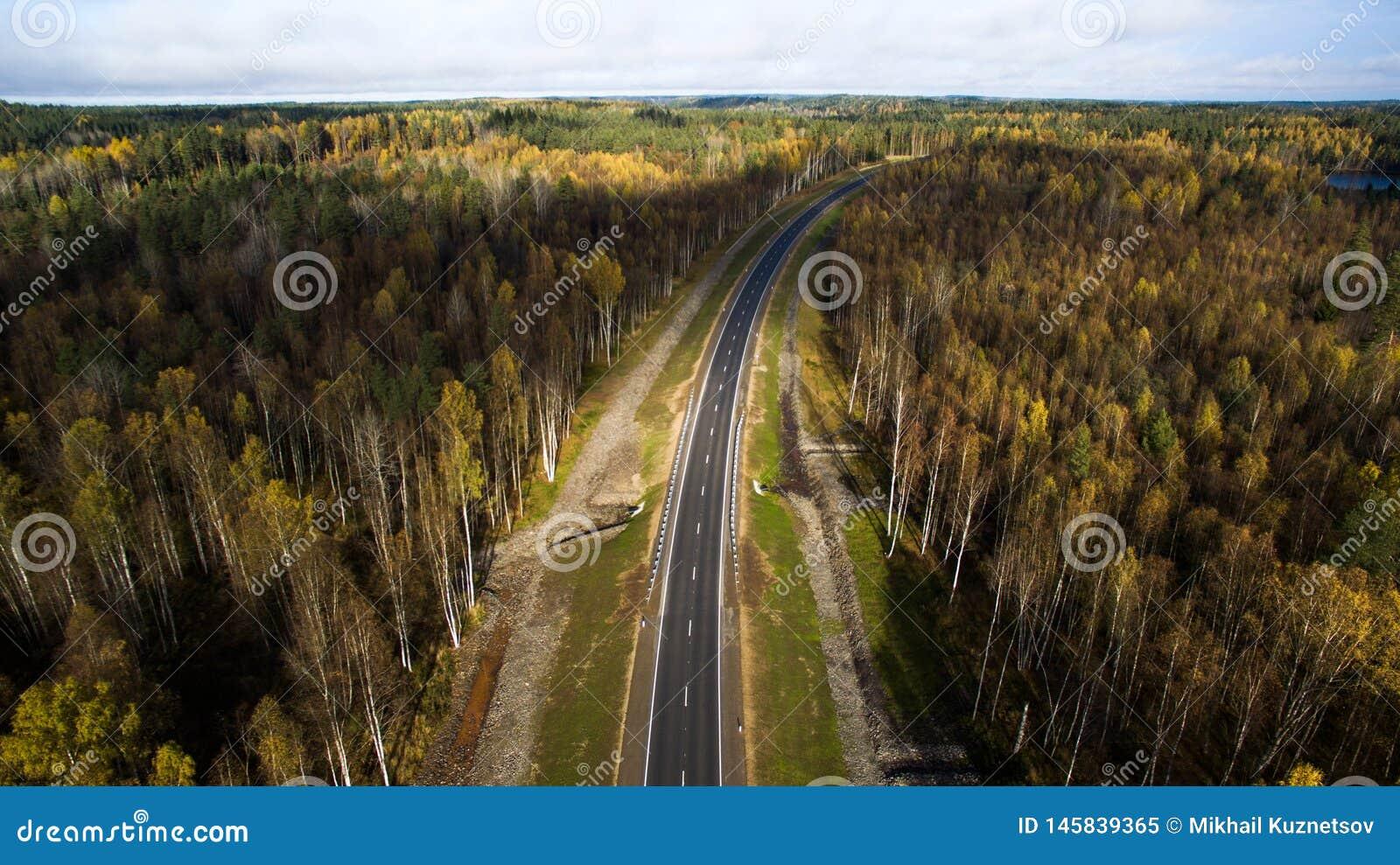 Вид с воздуха проселочной дороги через лес в осени фотография трутня