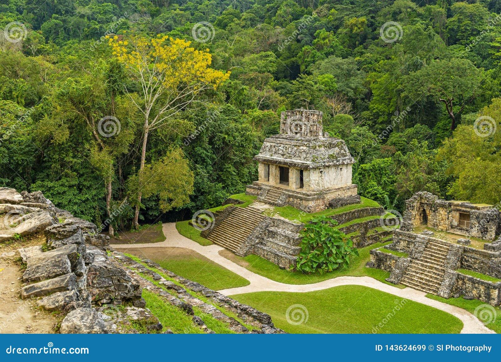 Вид с воздуха руин Palenque майяских, Мексика