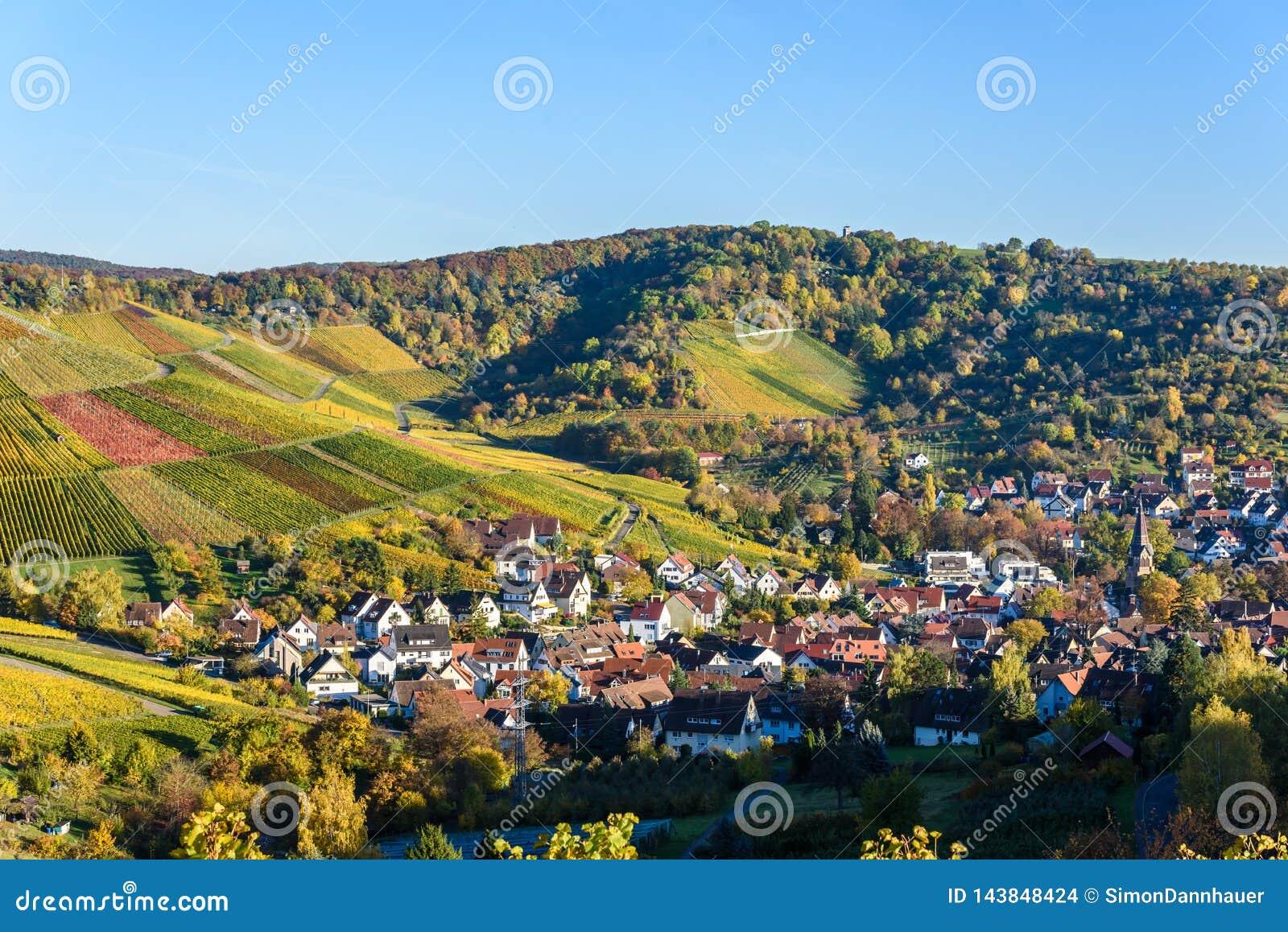 Виноградники на Штутгарте - красивом винодельческом регионе на юге Германии