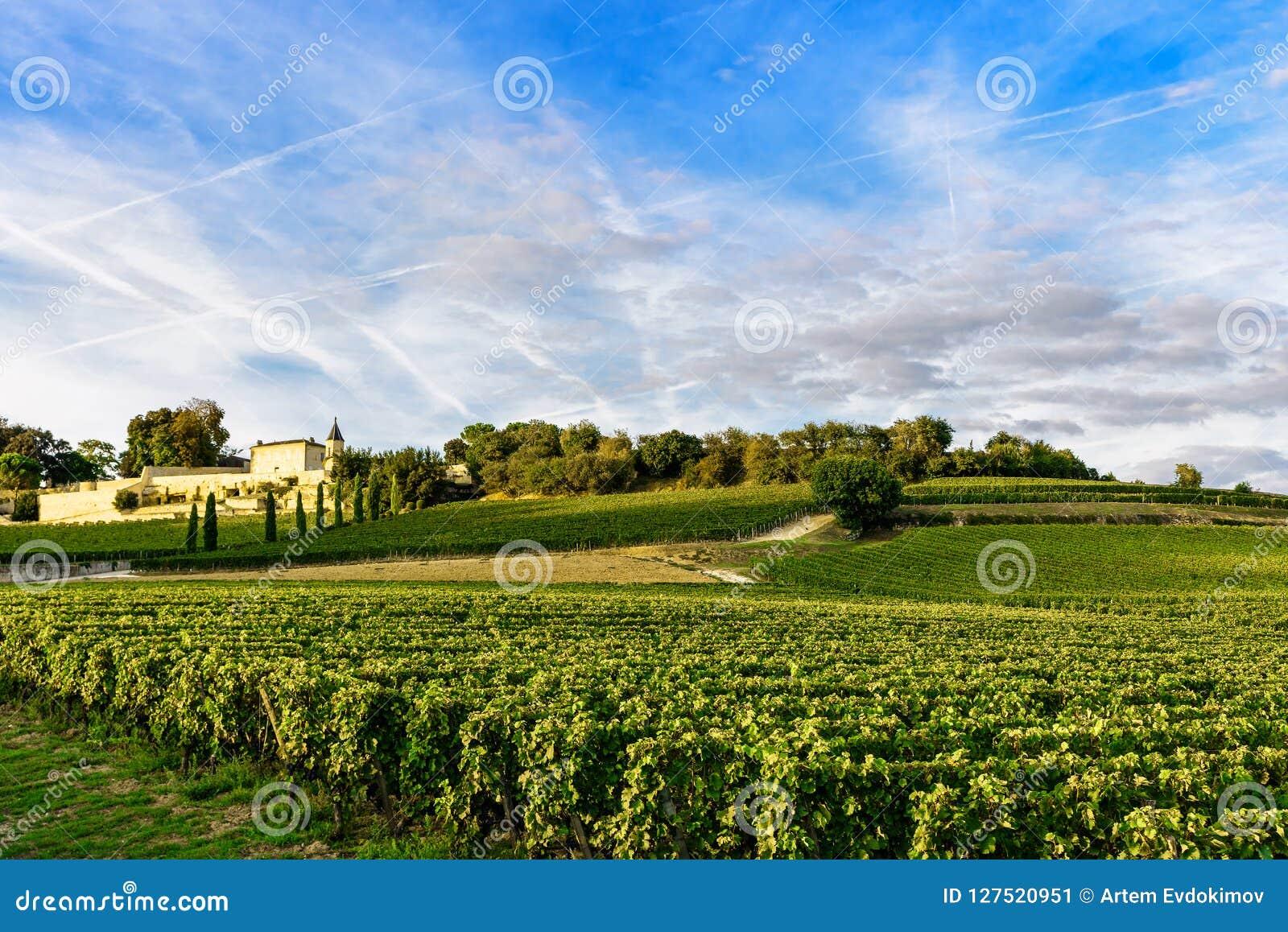 Виноградники Святого Emilion, Бордо Wineyards в Франции