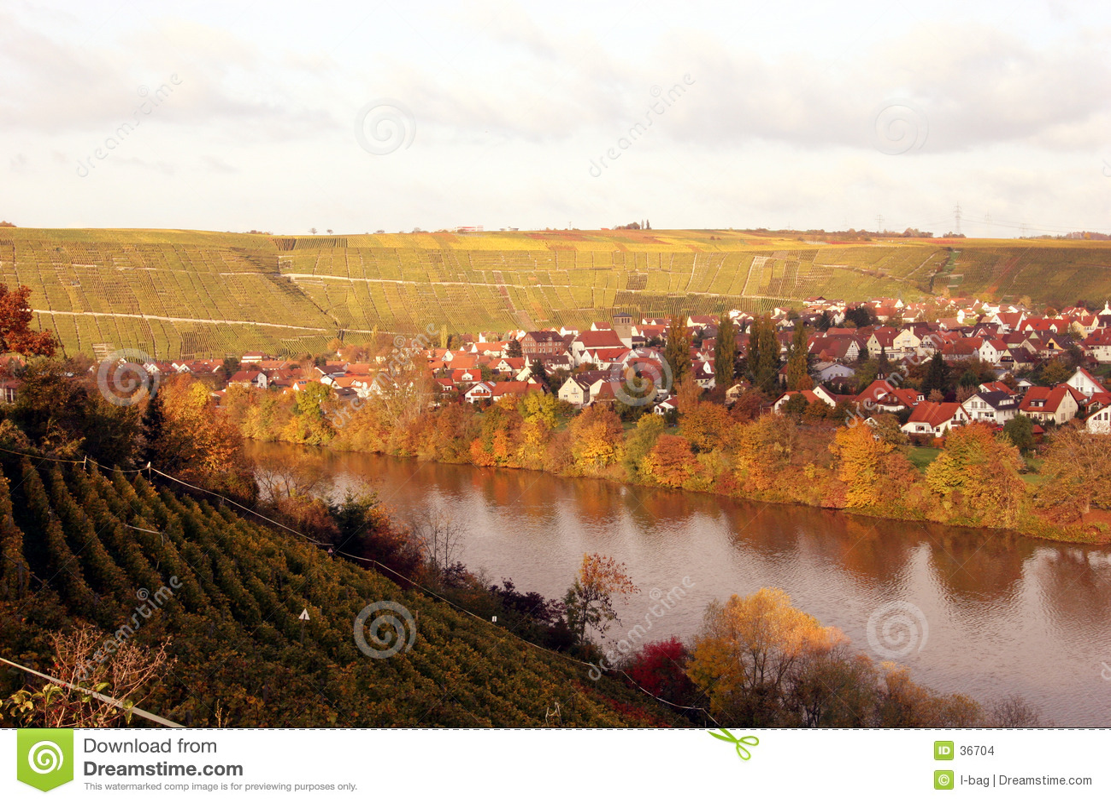 виноградник села падения