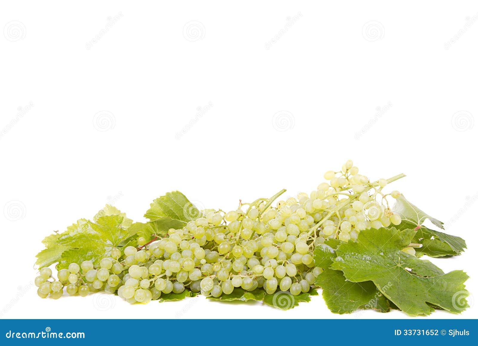 Виноградины на белизне