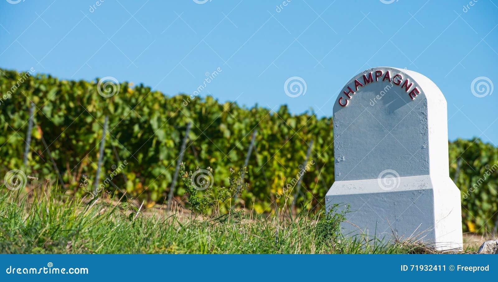 Виноградники Шампани памятника границы в баре des Коута