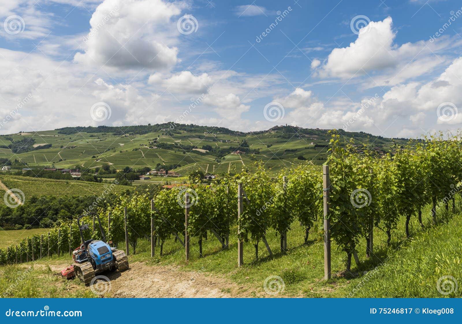 Виноградники Barbaresco, Garbelletto Пьемонта