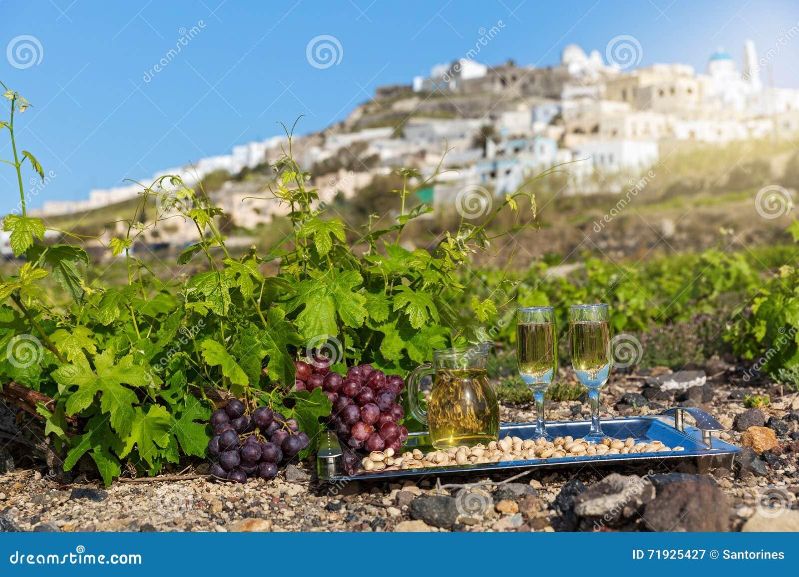 Вино и виноградники