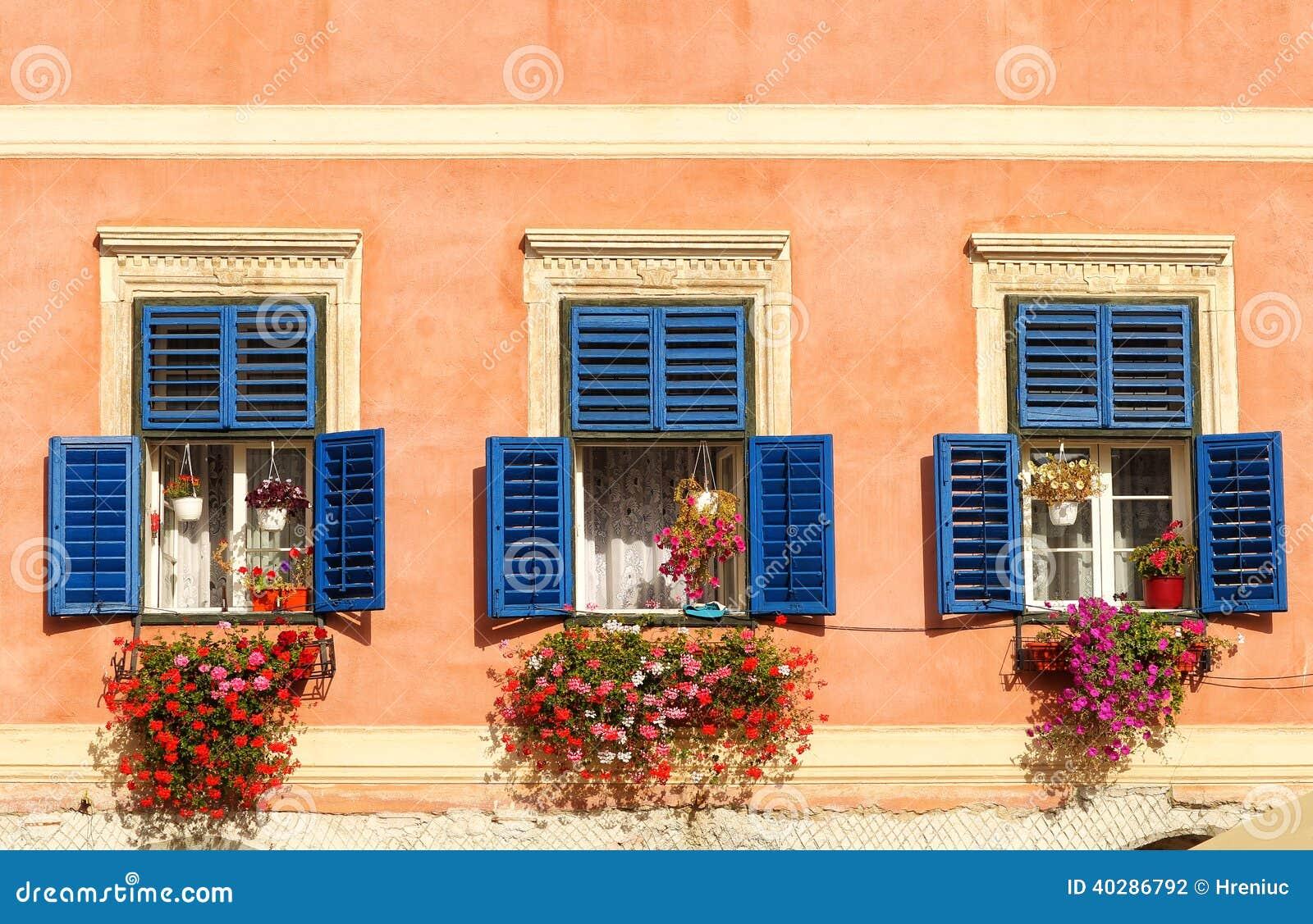 Винтажные окна с открытыми деревянными штарками и свежими цветками