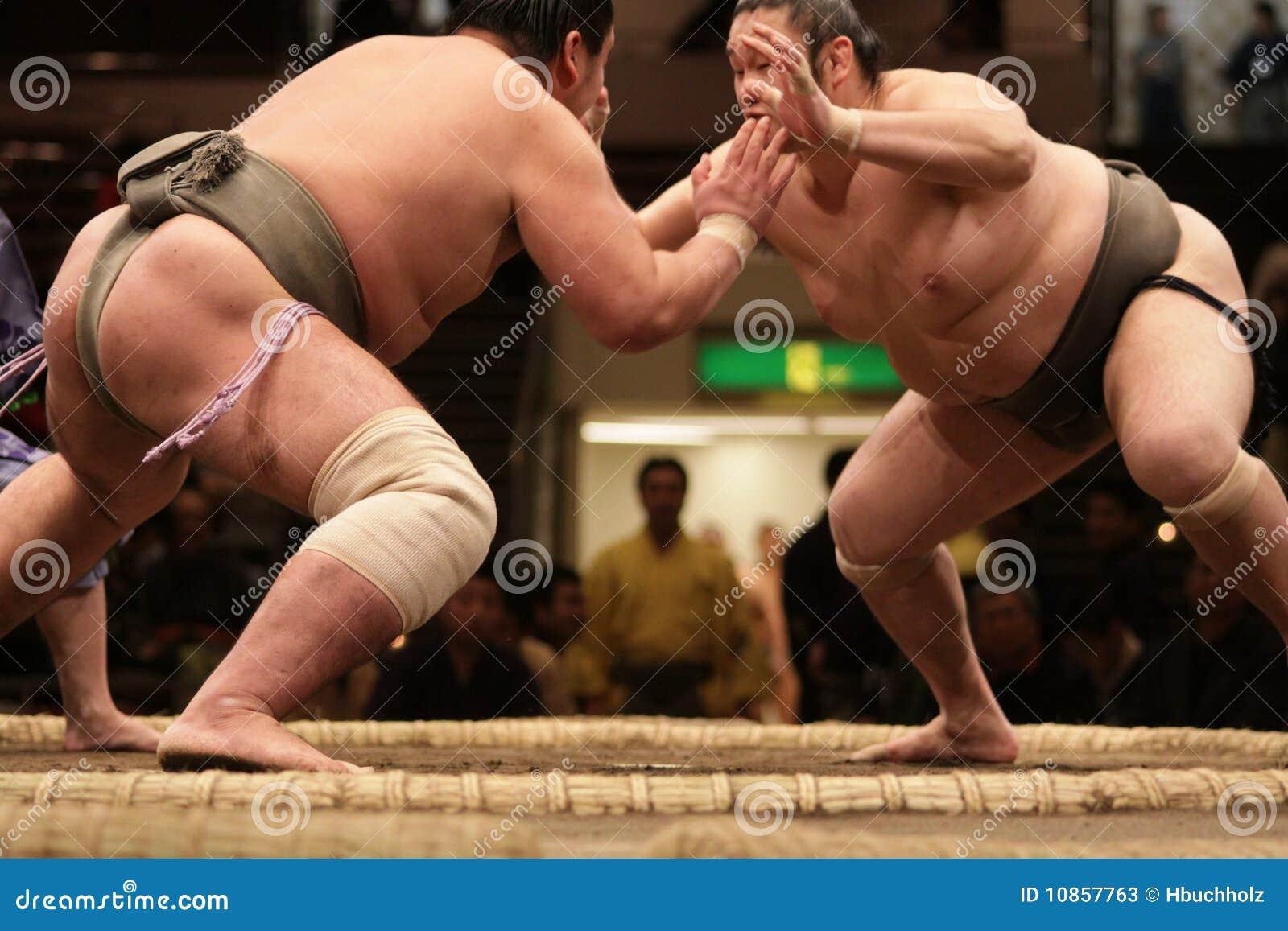 включая sumo дракой 2 борца