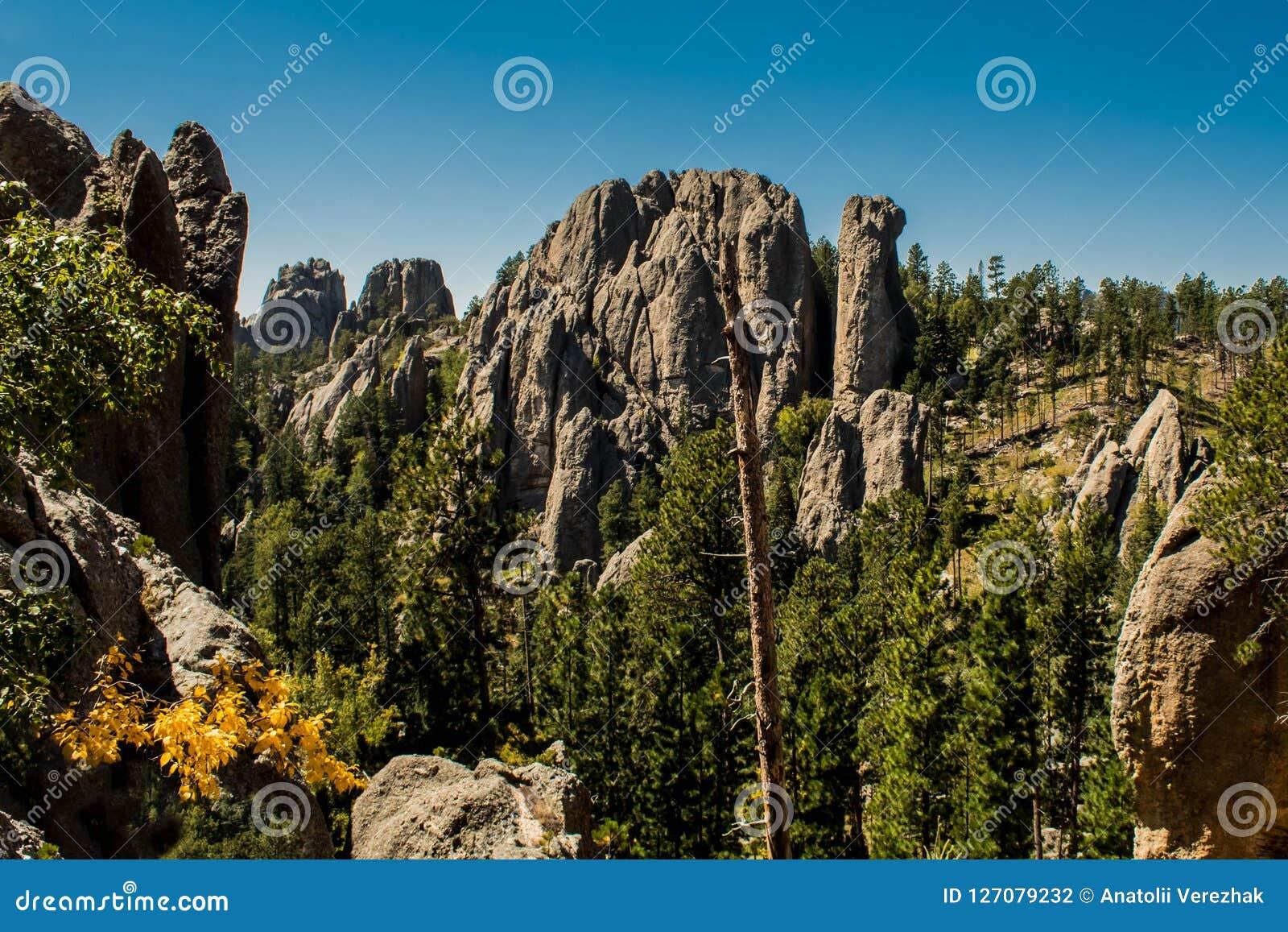 Внушительный ландшафт горы на национальном лесе Black Hills, Южной Дакоте, США