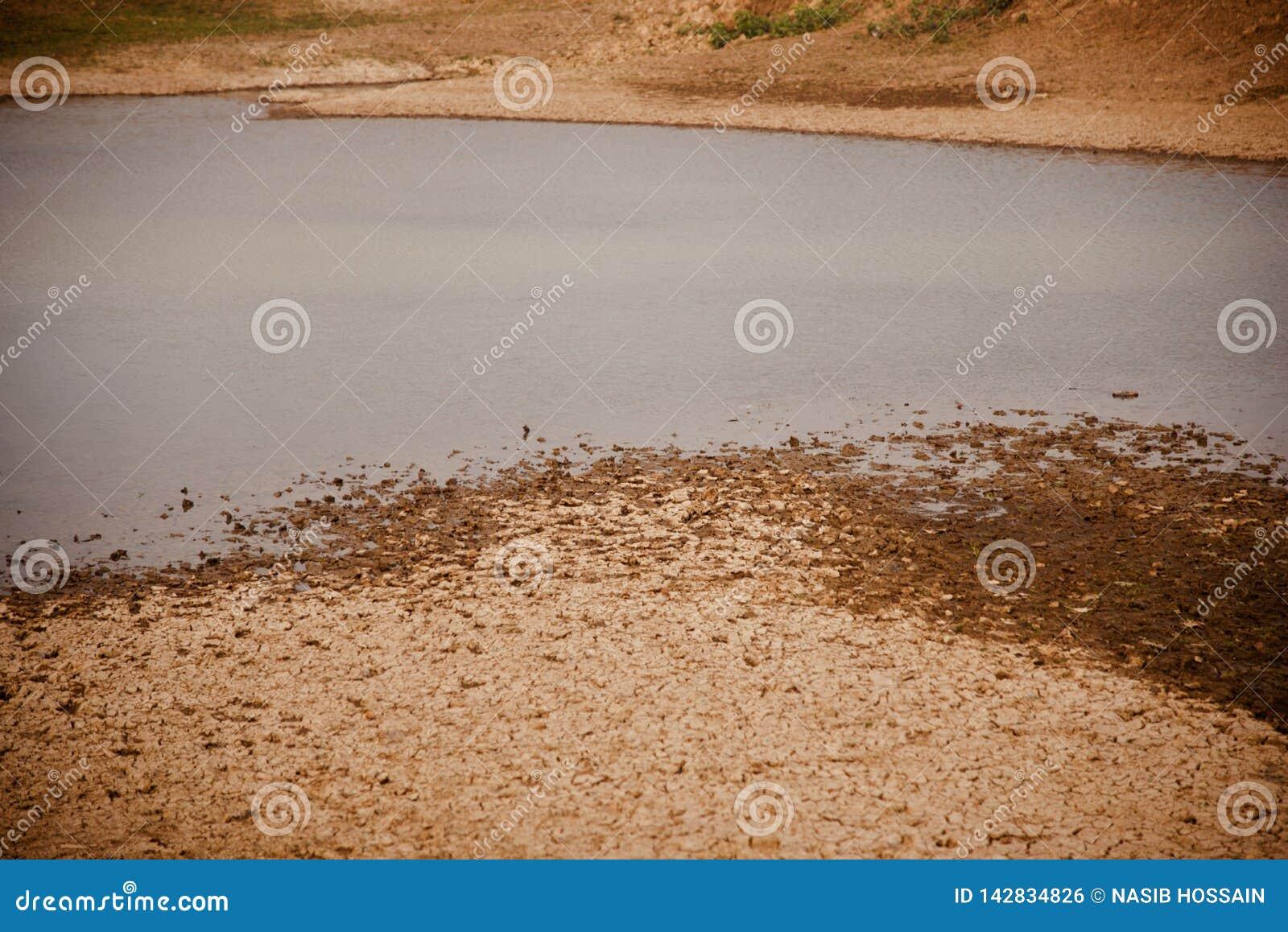 Вода пруда с фото высушенной почвы поверхностным естественным