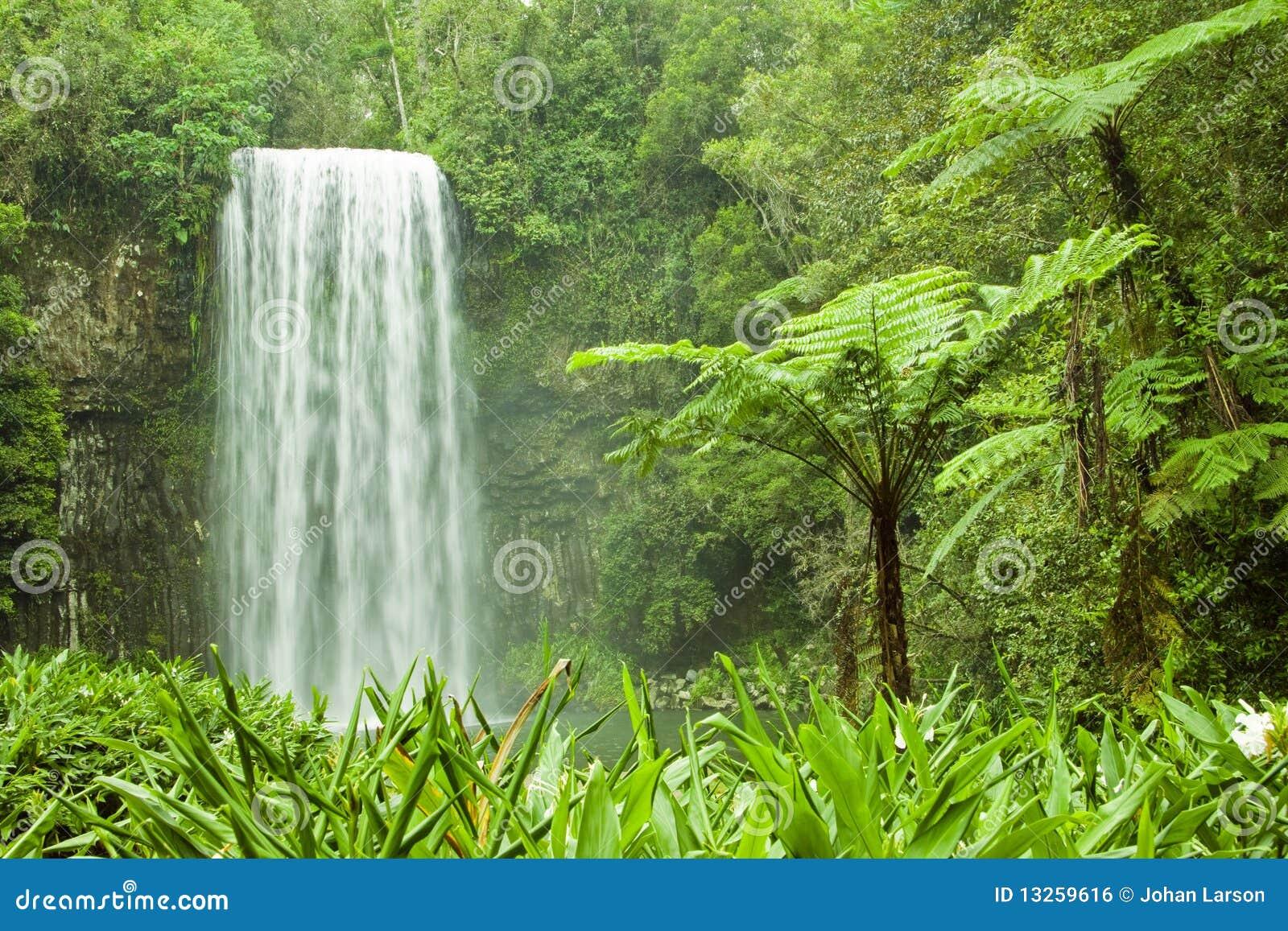 водопад Австралии красивейший тропический