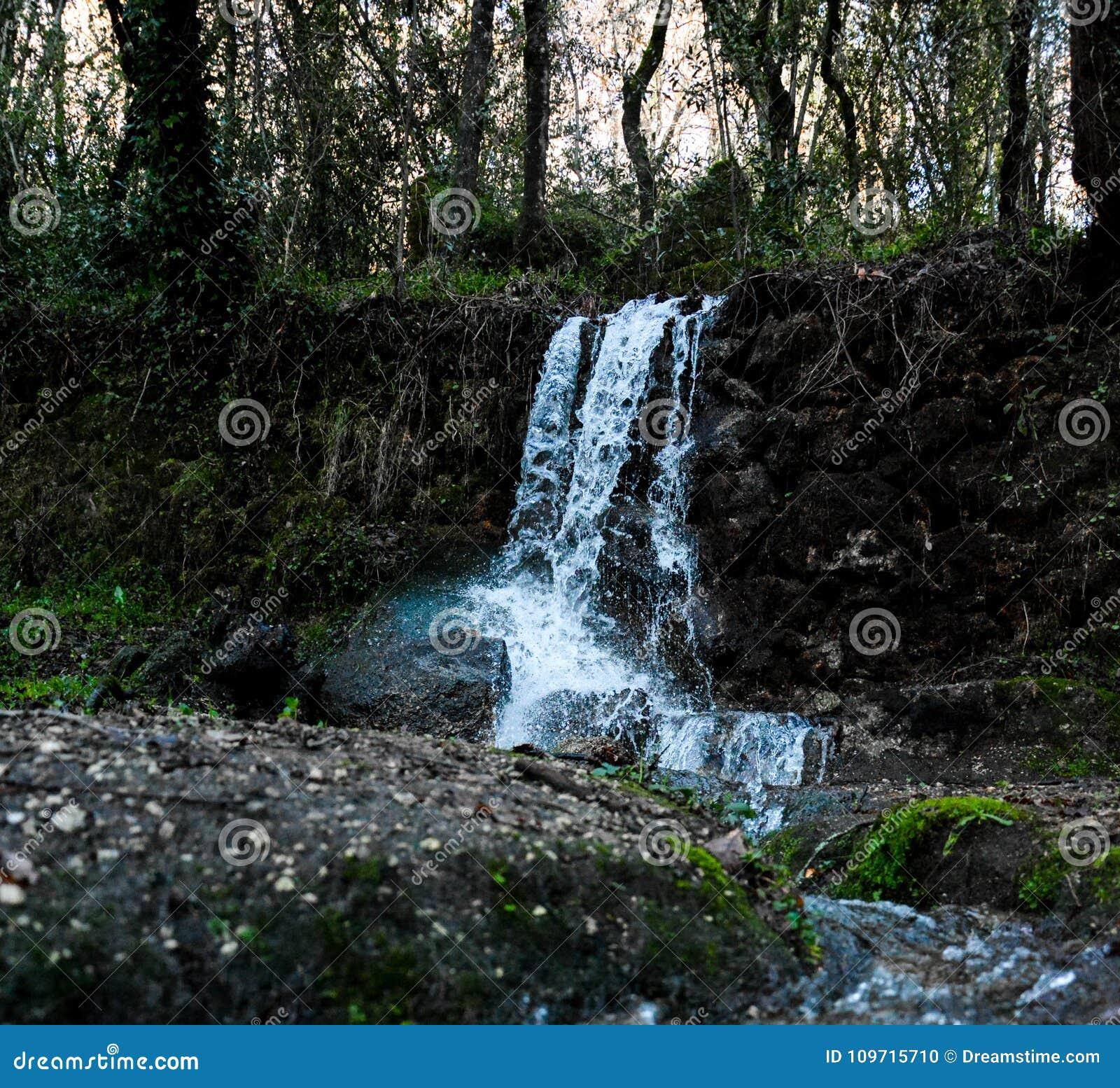 Водопад в древесинах