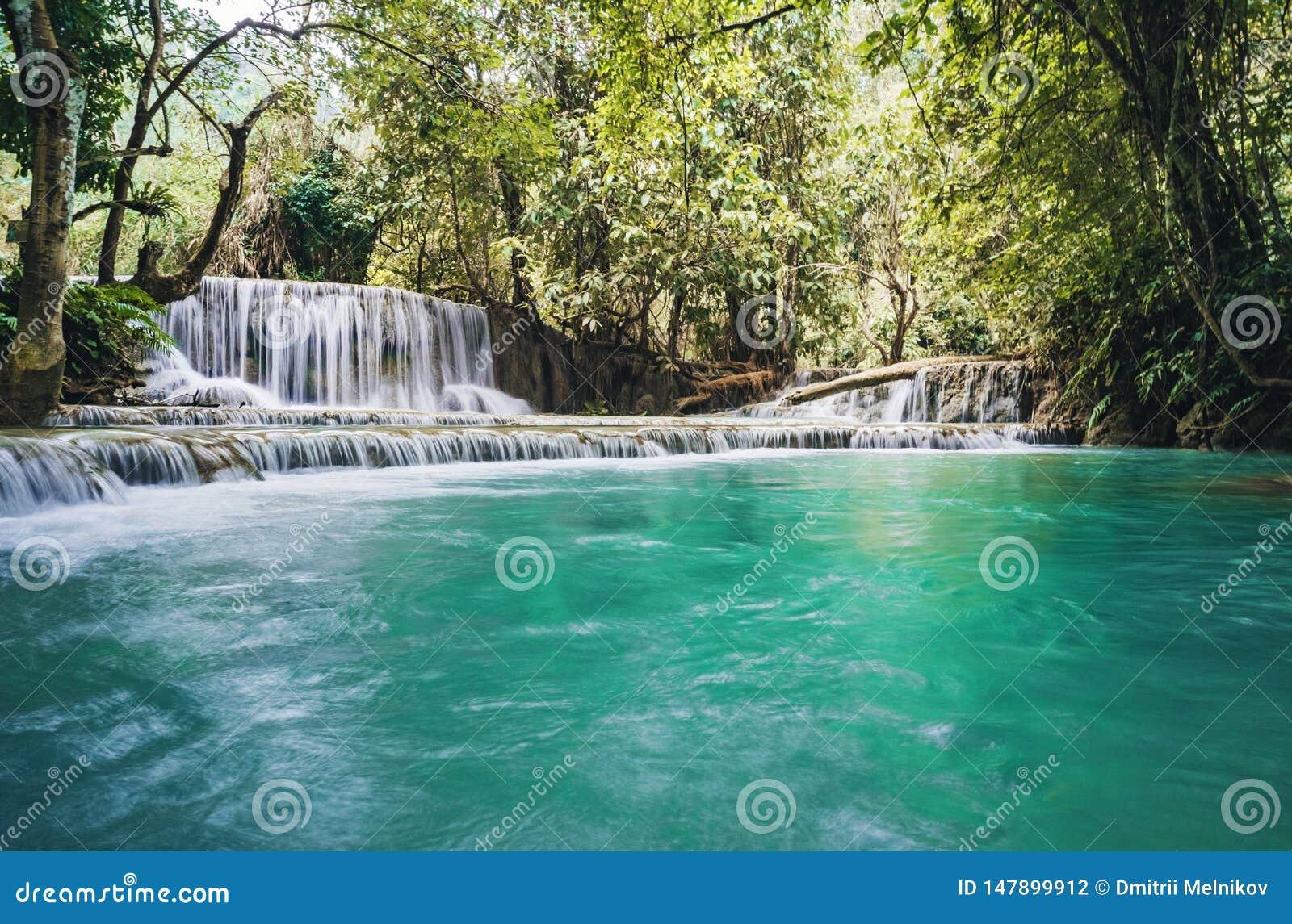 Водопад и небольшой крутой пруд с водой бирюзы Фантастически красивая природа с лесом чистой воды и дикими джунглями