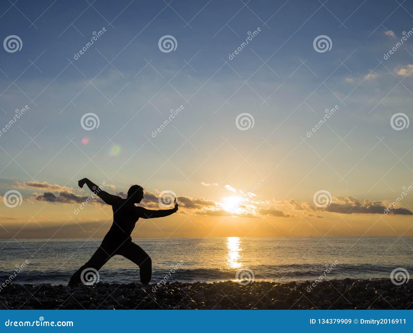 Военный художник с оранжевым заходом солнца Силуэт whushu практики человека Здоровый уклад жизни