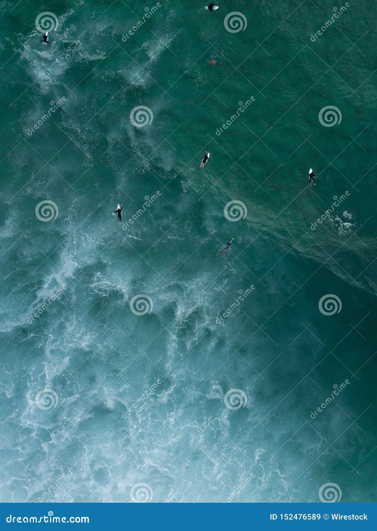 Воздушная съемка серферов плавая кладя на их доски в волнах моря ждать сильных для того чтобы прийти