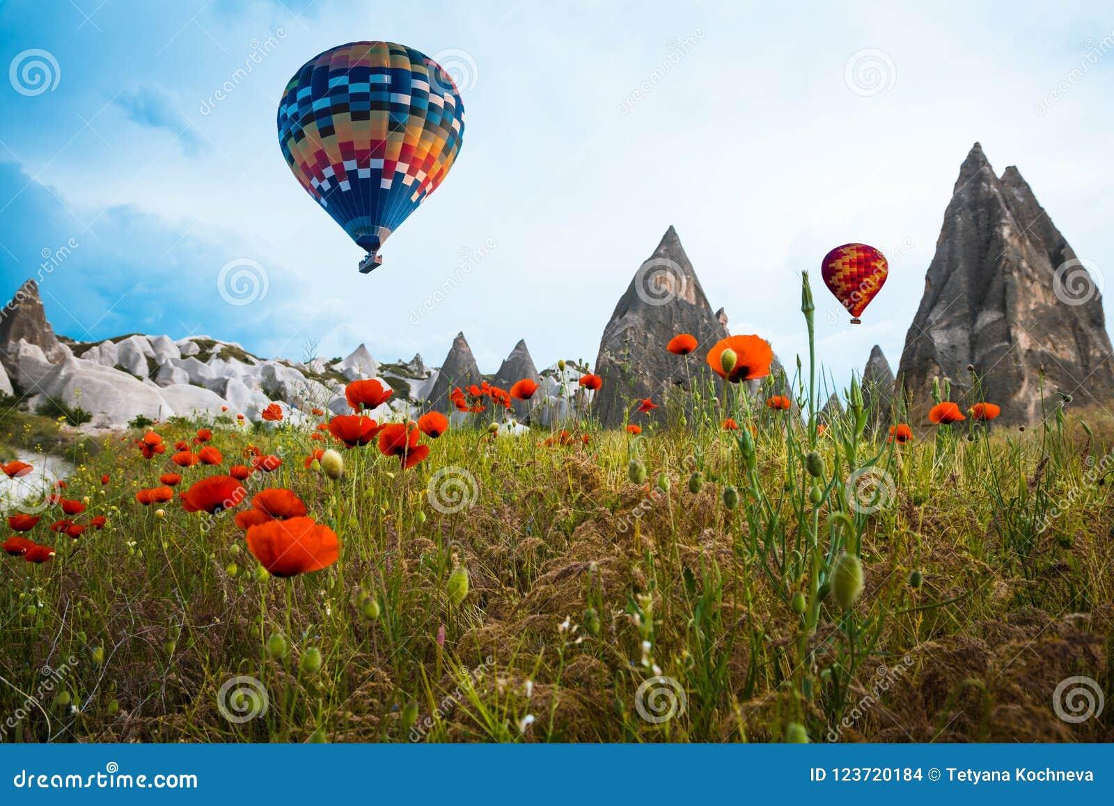 Воздушный шар над маками field Cappadocia, Турция