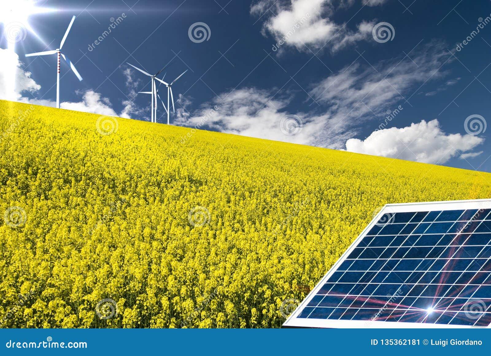 Возобновляющая энергия и устойчивое и сбалансированное развитие