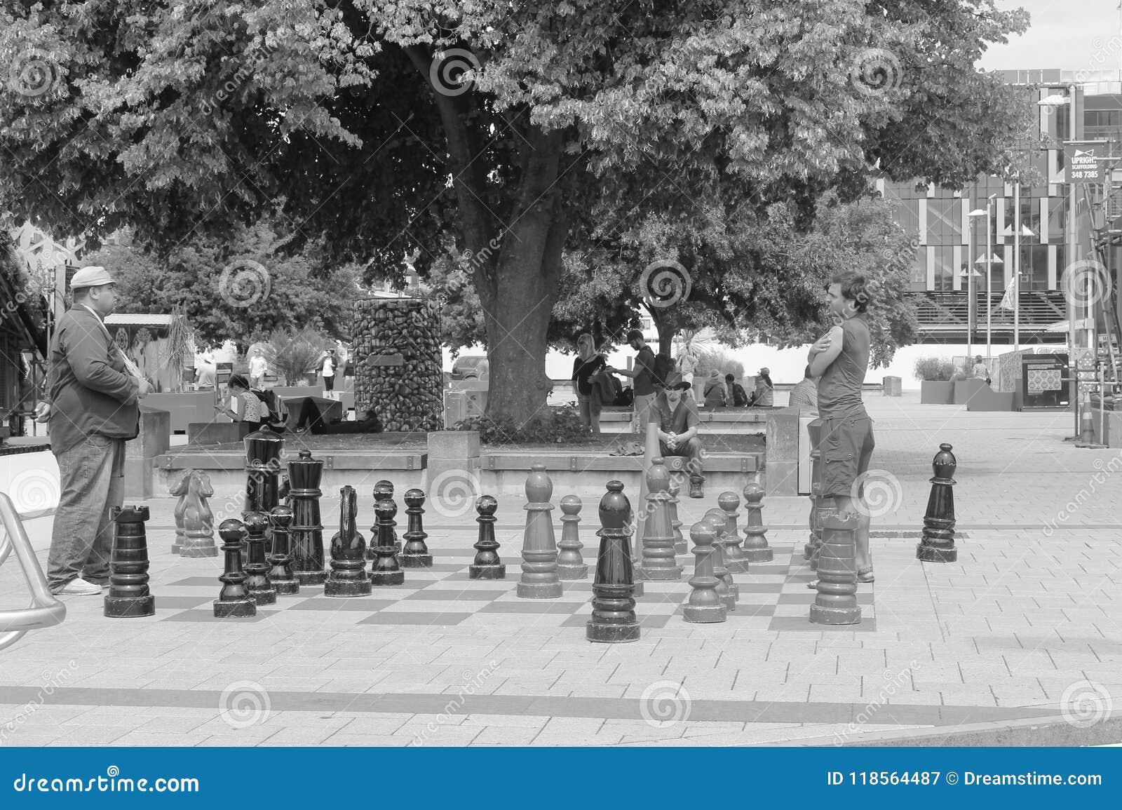 Война шахмат