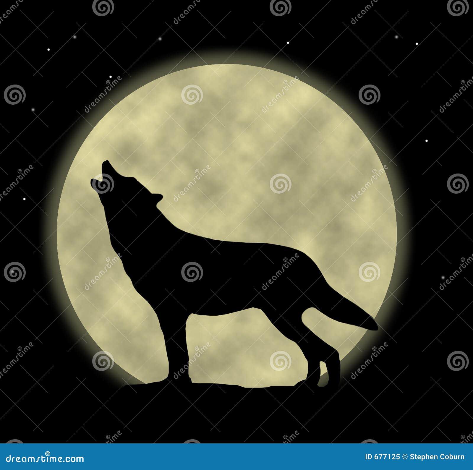 волк завывать