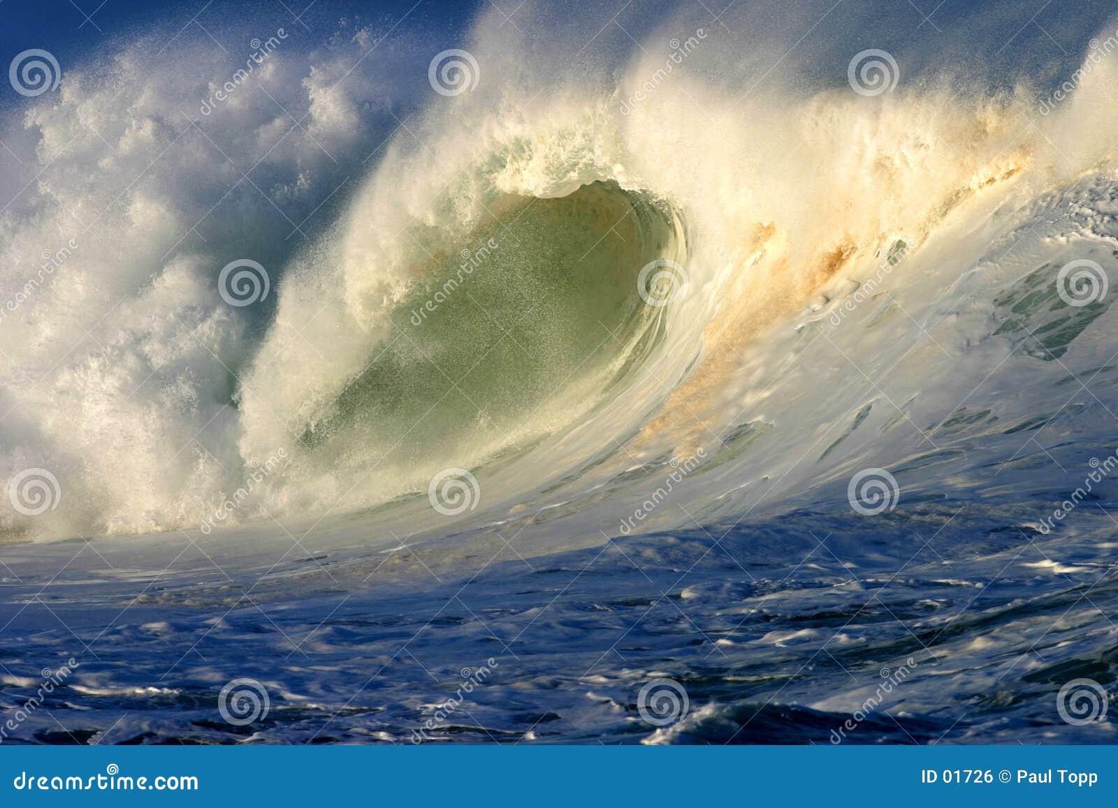 волна океана Гавайских островов мощная занимаясь серфингом