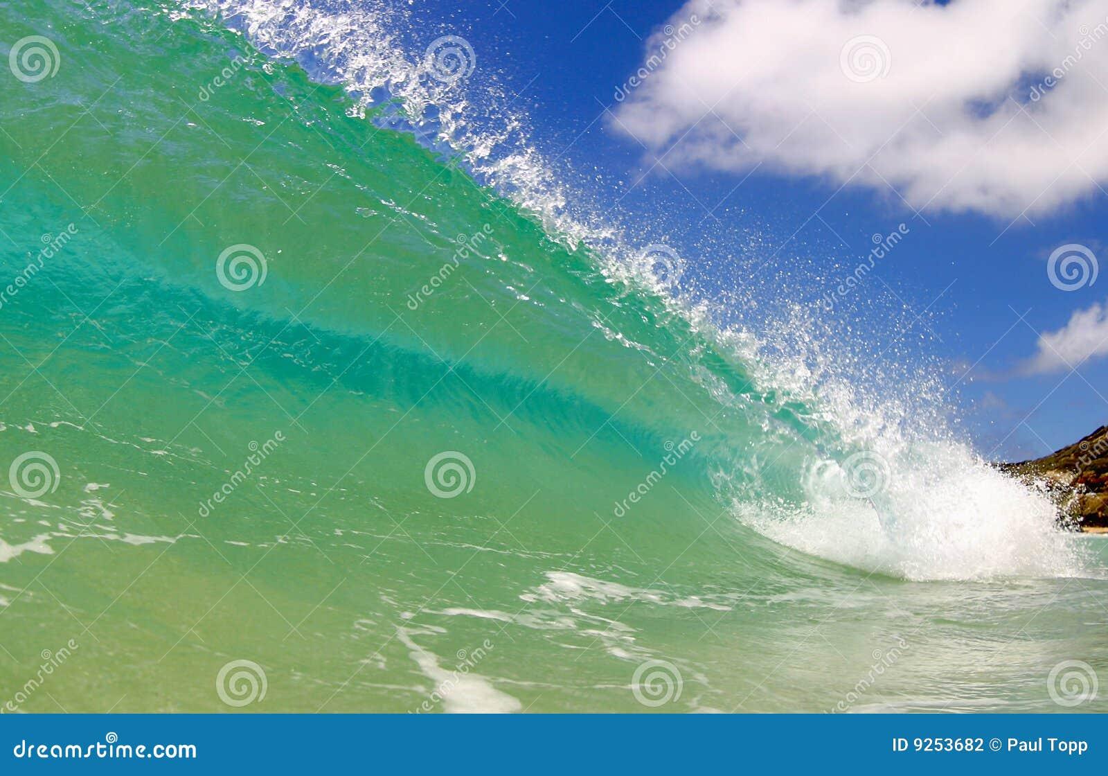 волна океана дня Тихая океан солнечная занимаясь серфингом