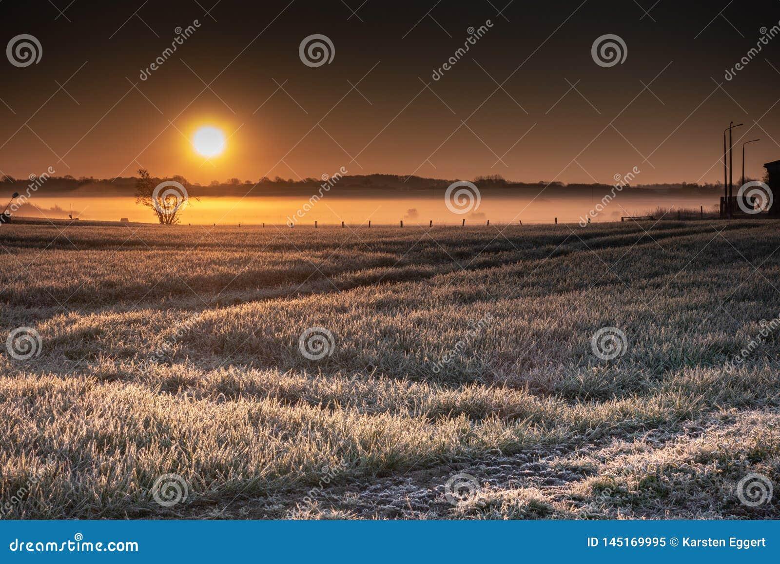 Восход солнца над широкими полями