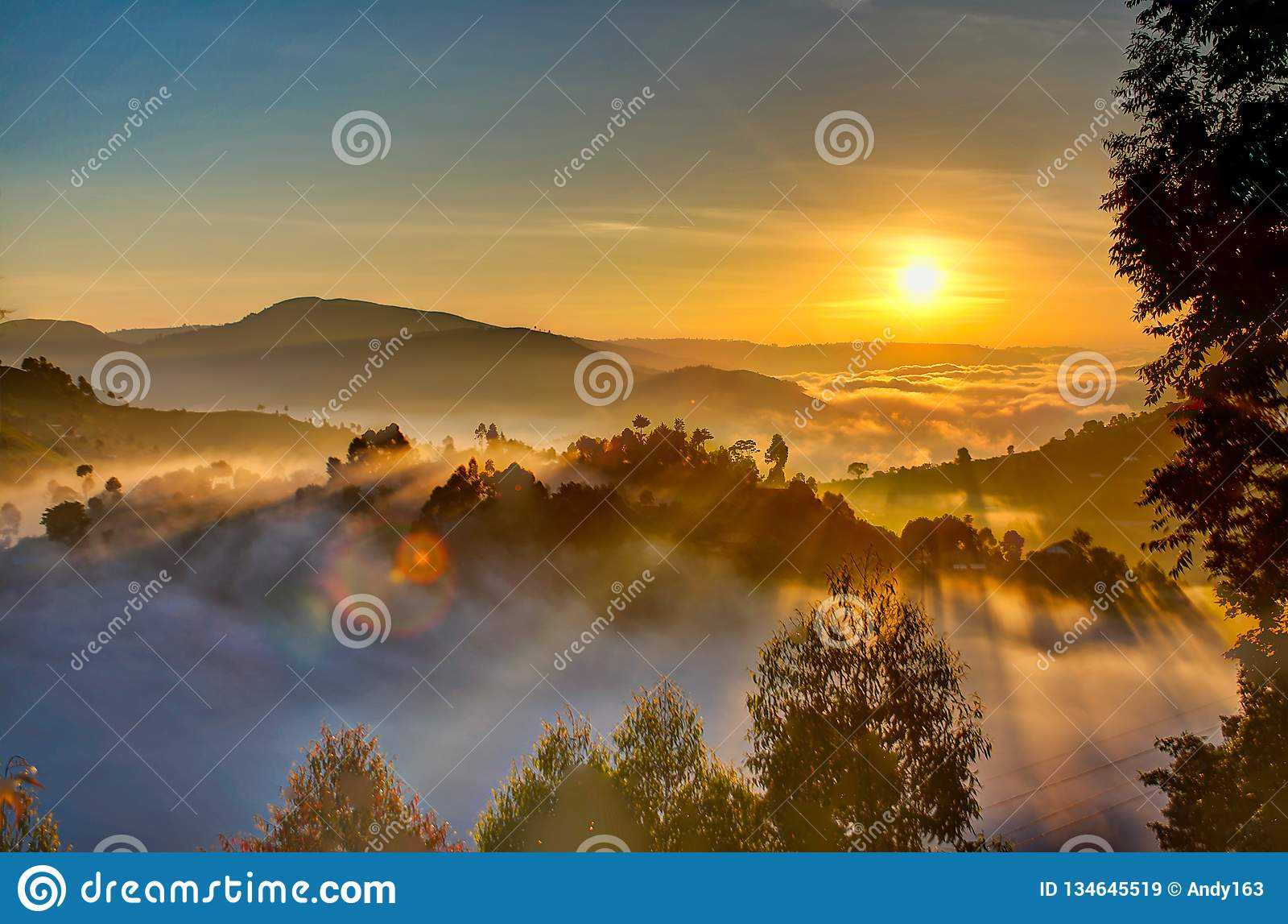 Восход солнца Уганды с деревьями, холмами, тенями и туманом утра