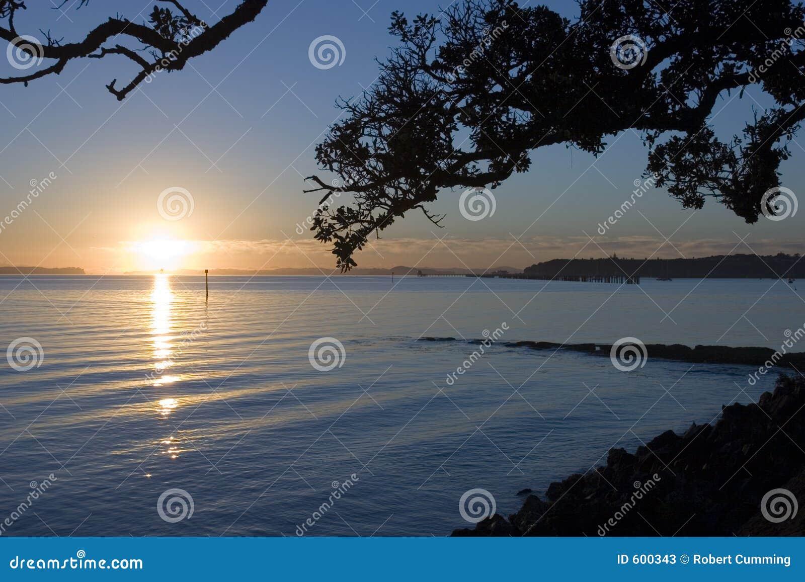 восход солнца auckland