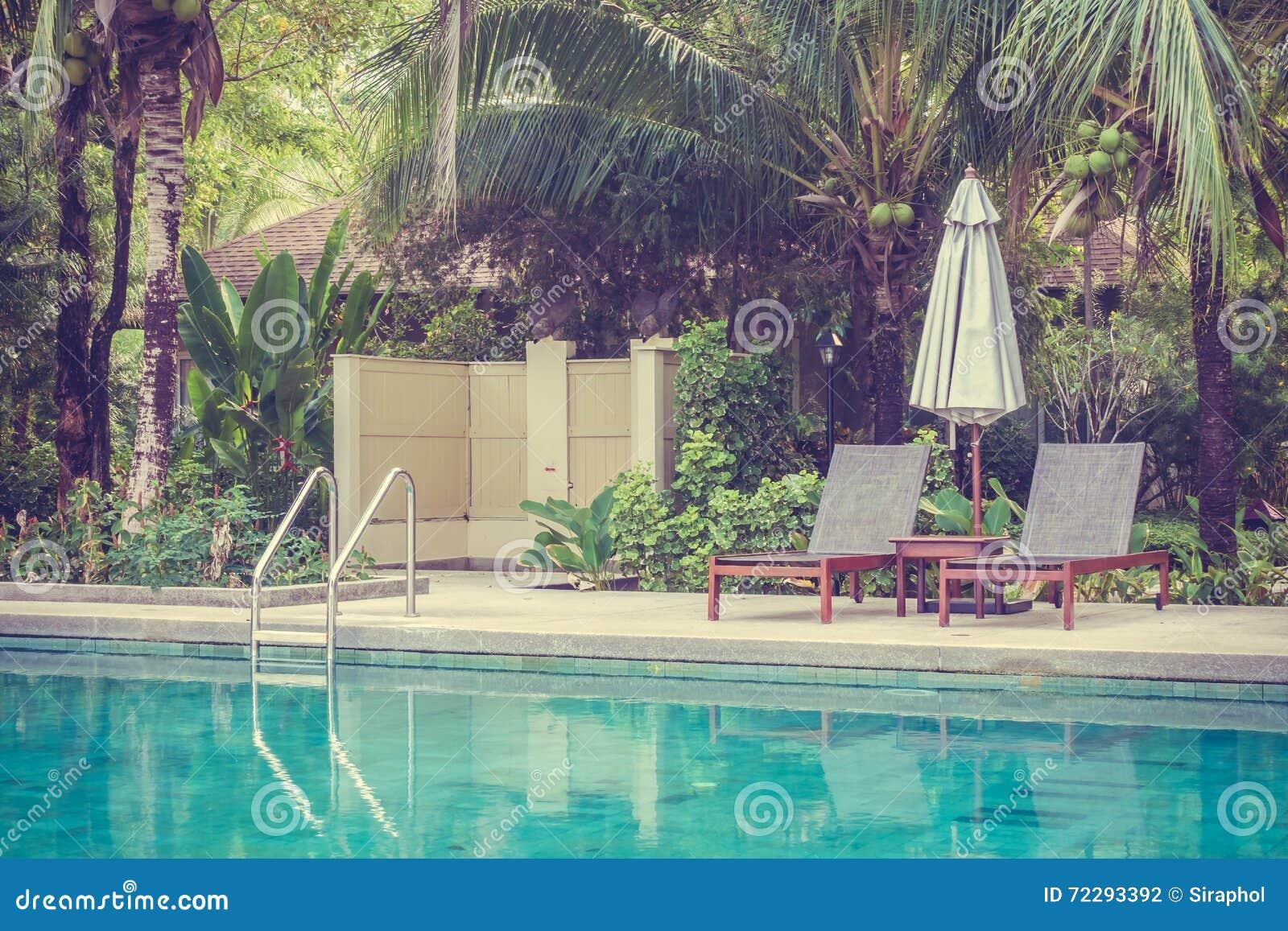 Download вода зонтиков заплывания бассеина Стоковое Фото - изображение насчитывающей орхидея, сад: 72293392