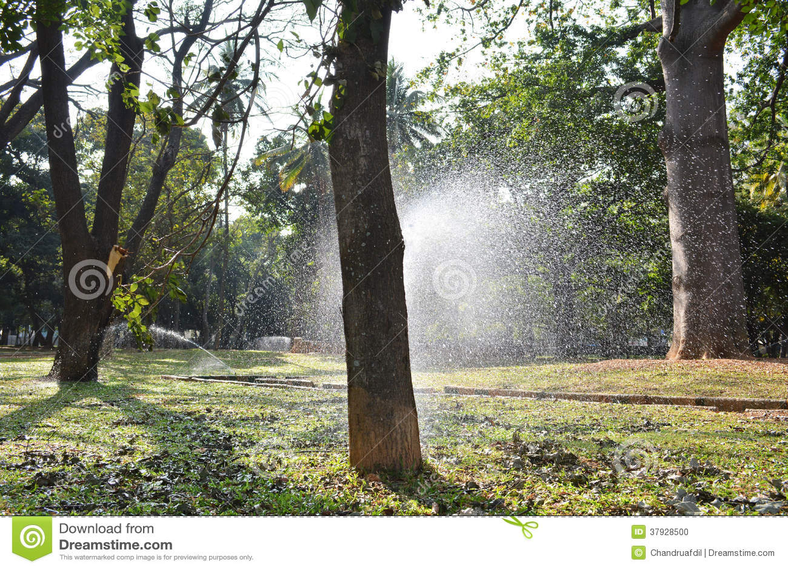 Вода spark2