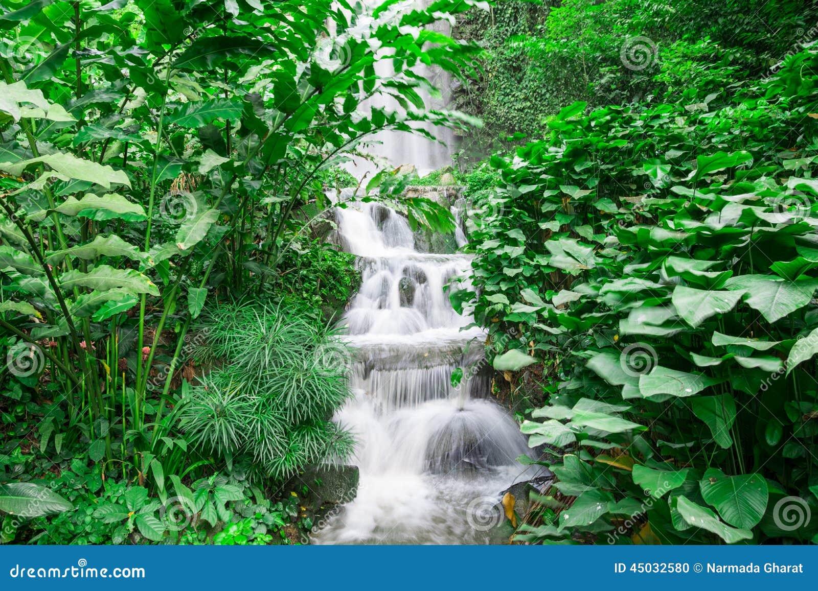 Водопад в дождевом лесе
