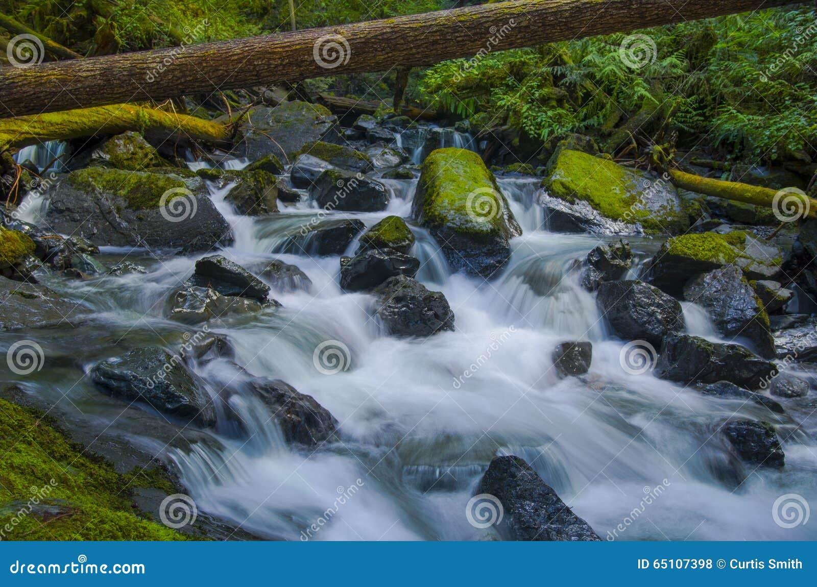 Водопад на заводи Murhut в олимпийском национальном лесе в штате Вашингтоне