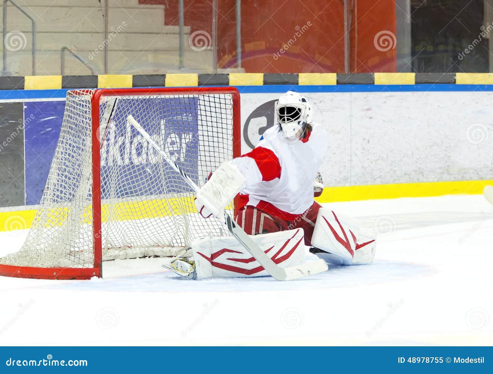 Вратарь хоккея