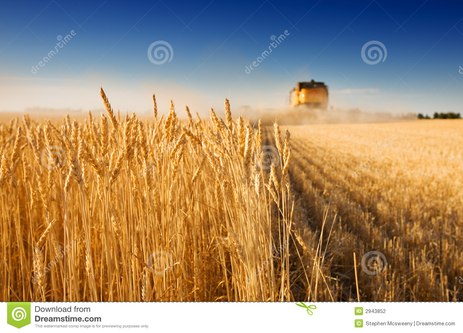 время хлебоуборки