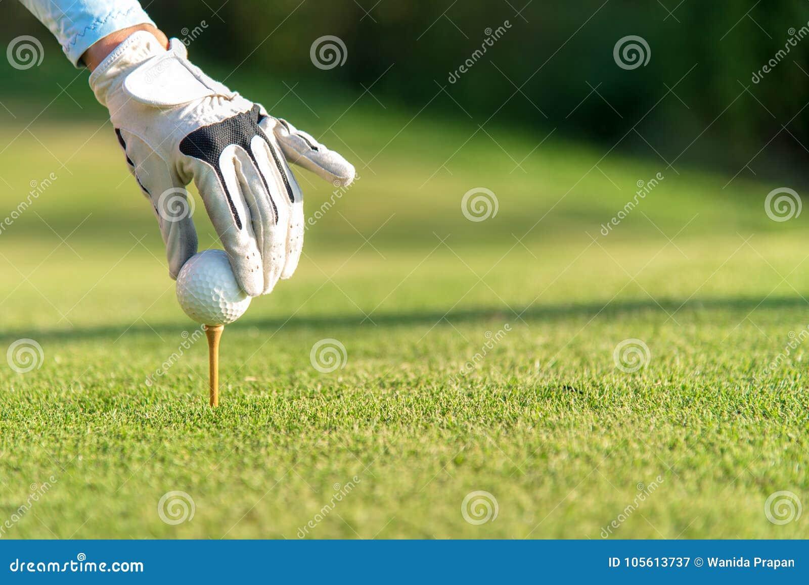 Вручите азиатскую женщину кладя шар для игры в гольф на тройник с клубом в поле для гольфа на солнечный день для здорового спорта
