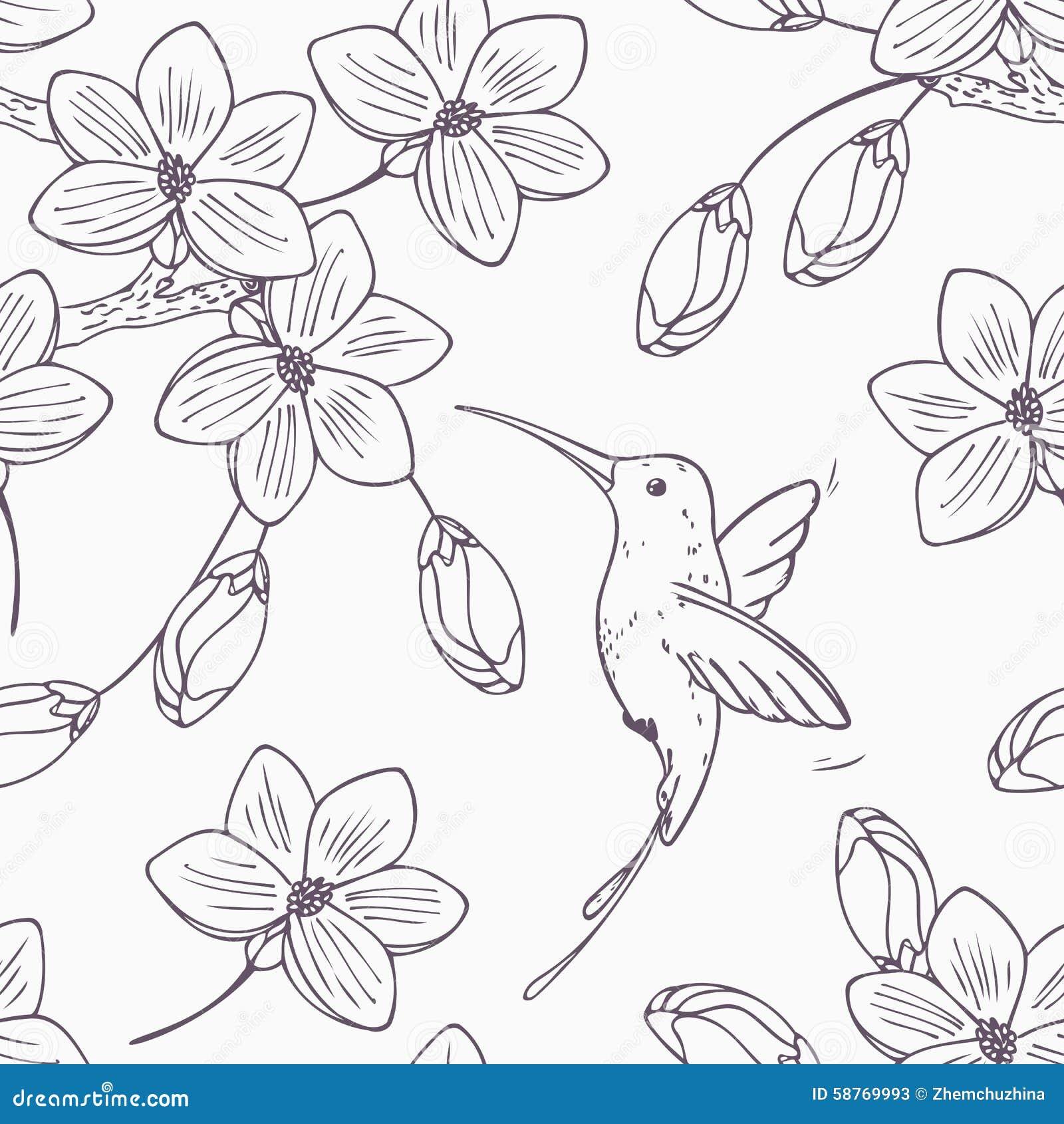 Вручите вычерченную monochrome версию безшовной картины с colibri и цветками птицы припевать