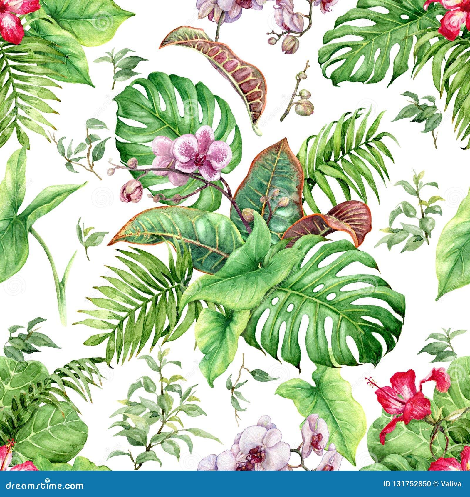 Вручите вычерченные цветки и листья тропических заводов