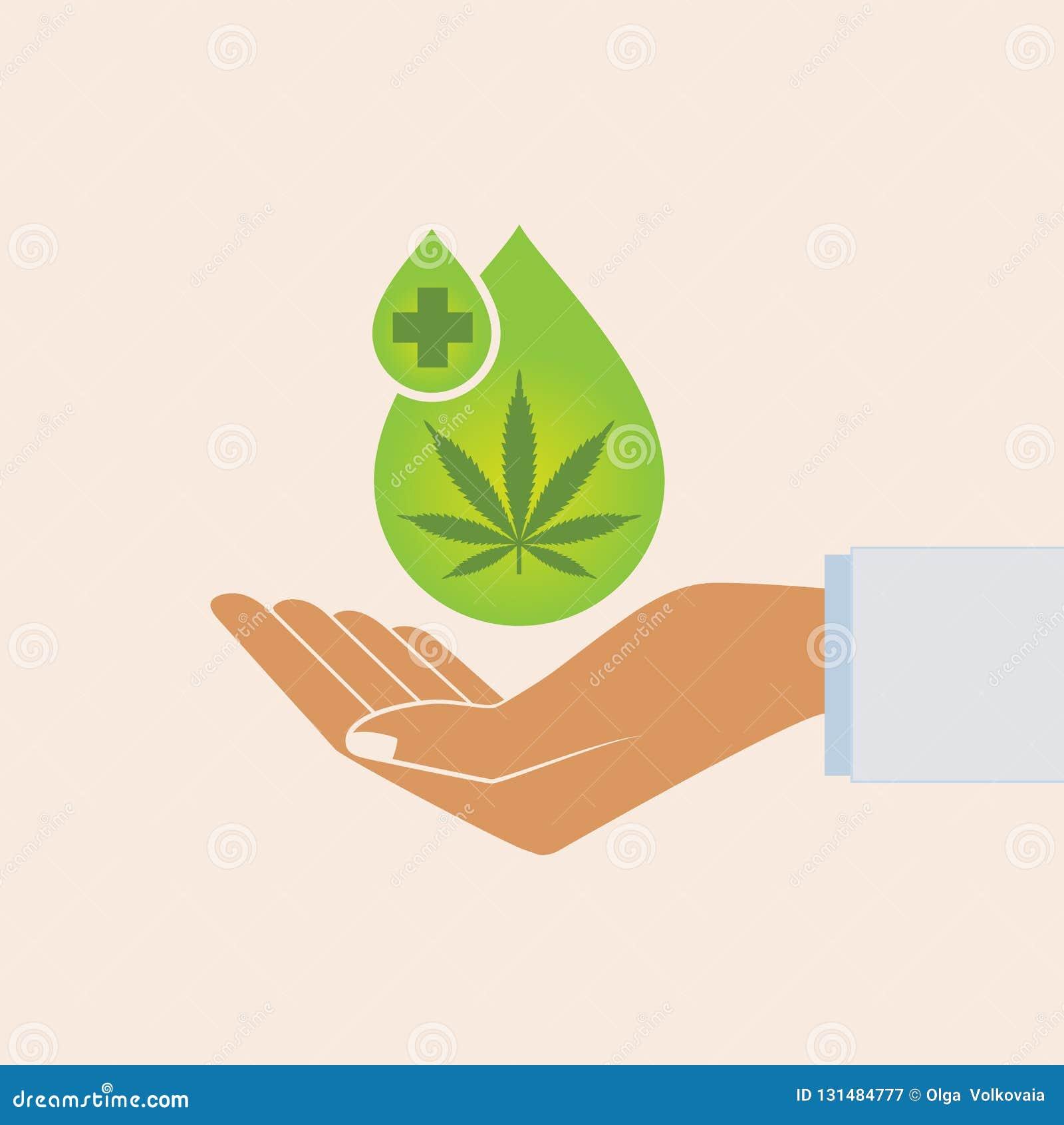 Вручите держать падение масла с лист марихуаны Медицинское масло конопли Выдержка конопли масла CBD Естественное масло пеньки