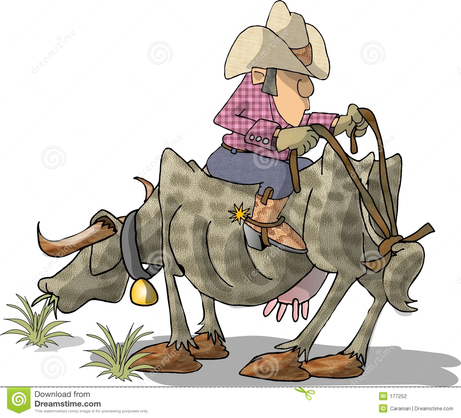 всадник быка