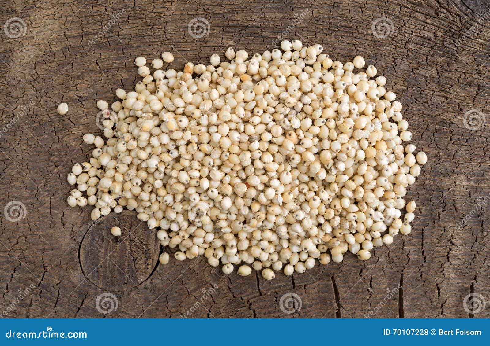 семена сорго