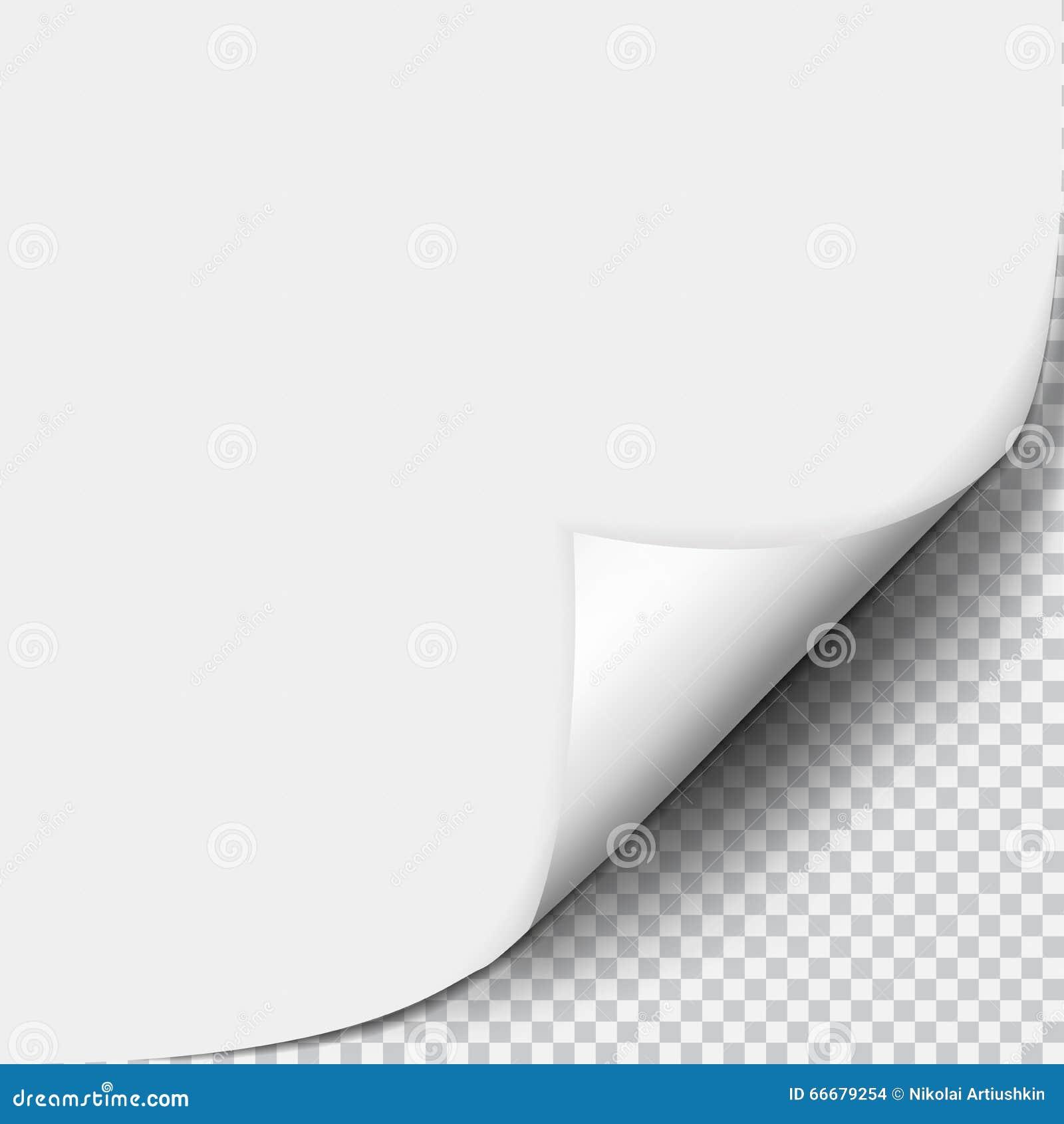 Вызовите скручиваемость с тенью на чистом листе бумаги