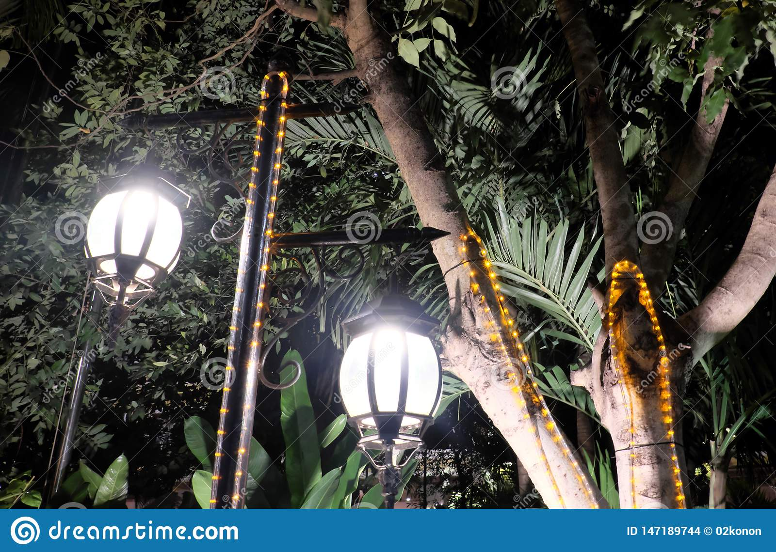 2 выковали винтажные фонарики освещают листья дерева Яркий светлый исходить от уличных фонарей