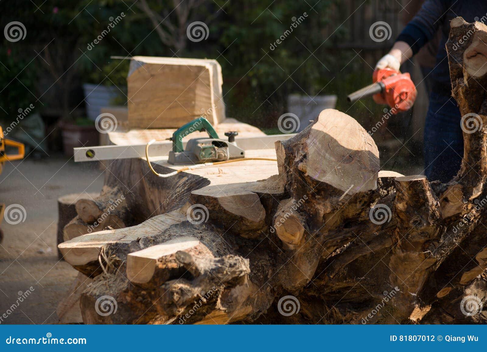 высекать Дерев-корня
