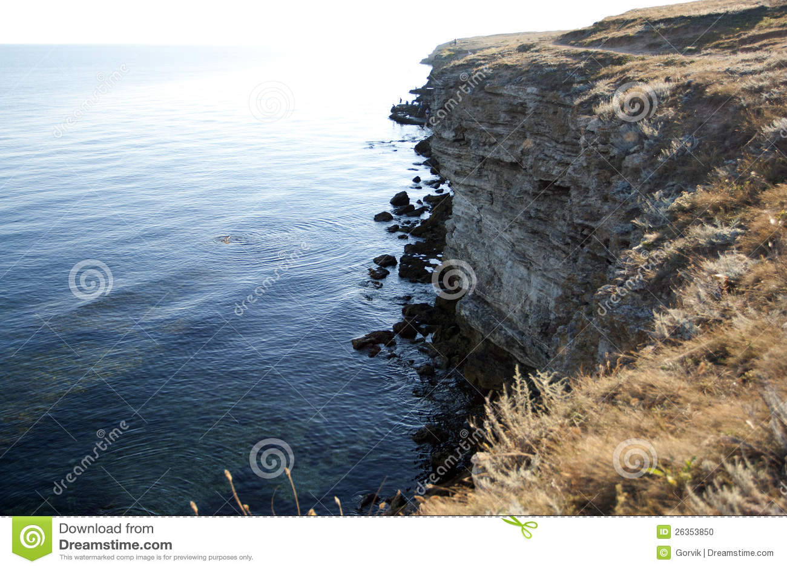 Высокие утесы ashore