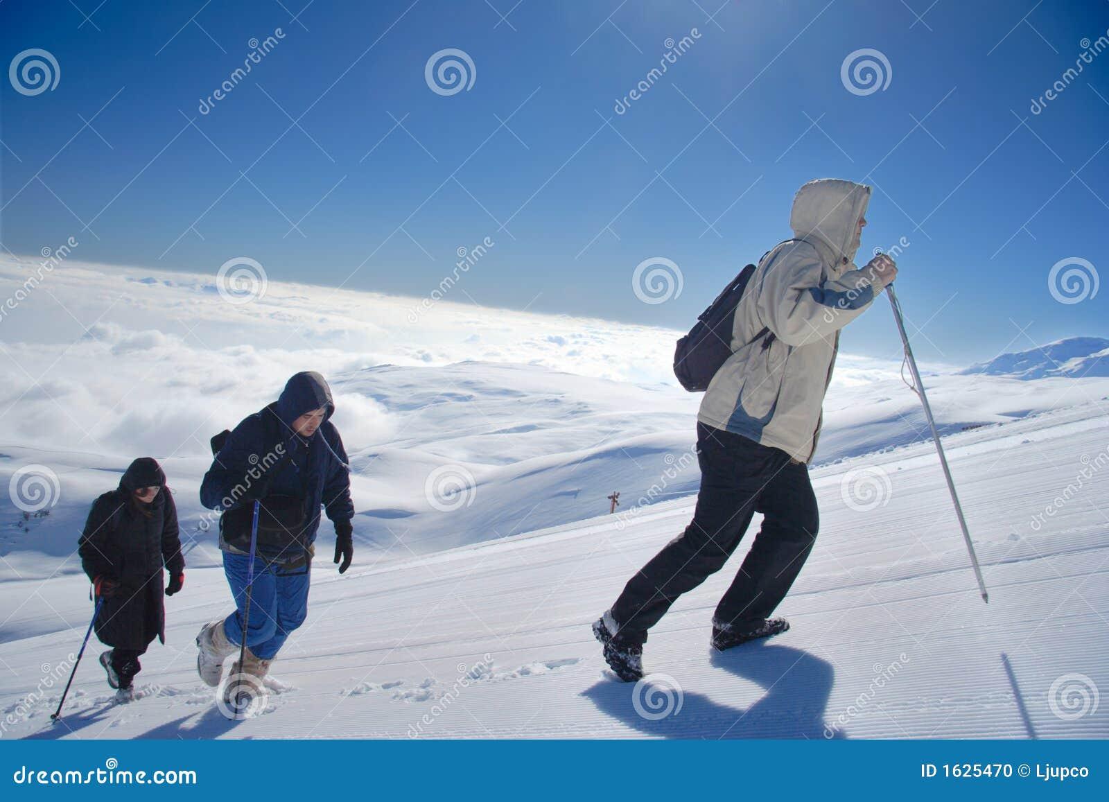 высокогорное взбираясь planina sar mt экспедиции